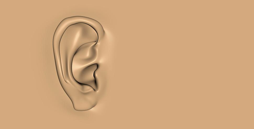 Das Ohr › HNO Vahle